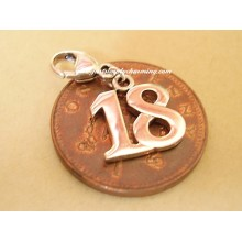 Eighteen 18 Clip-On Sterling Silver Charm