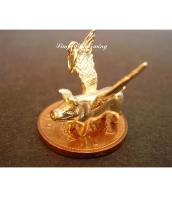 Flying Pig 14ct Gold Charm