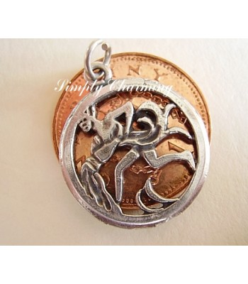 Aquarius Zodiac Sterling Silver Charms or Pendant