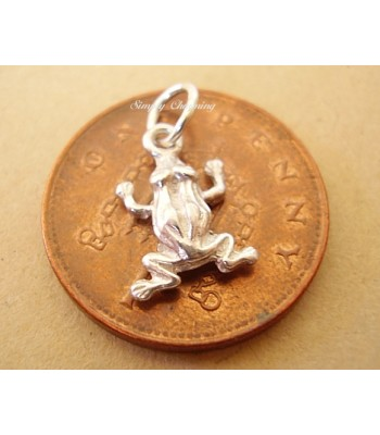 Miniature Frog Silver Charm