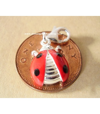 Enamelled Sterling Silver Clip On Ladybird Charm