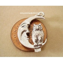 Owl On Moon Sterling Silver Charms