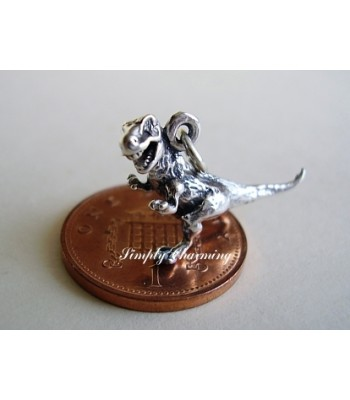 T rex Dinosaur Sterling Silver Charm