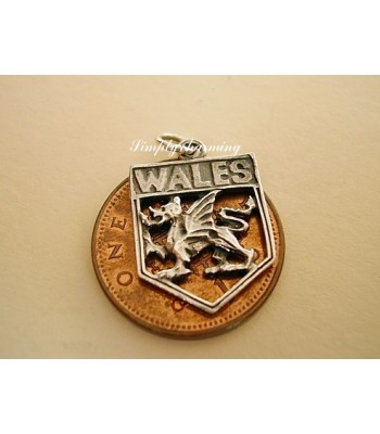 Wales Shield Sterling Silver Charm